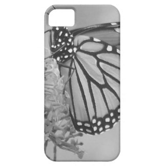 Monarch Butterfly Clothing iPhone 5 Cover