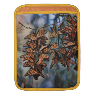 Monarch butterfly cluster, on a ipad sleeve