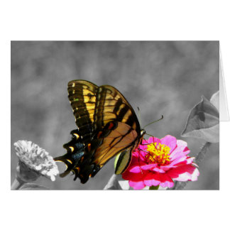 Monarch Butterfly  - Customizable Greeting Card