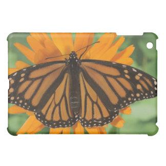 Monarch butterfly (Danaus plexippus) on pot iPad Mini Case