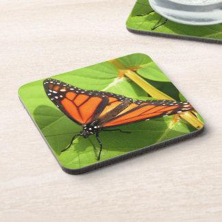 Monarch Butterfly Drink Coaster