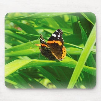 Monarch butterfly hiding amongst leaves. mouse pad