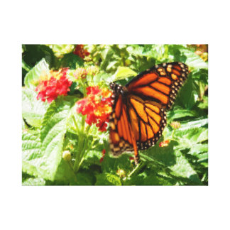 Monarch Butterfly in Motion Lantanas Painting Stretched Canvas Print