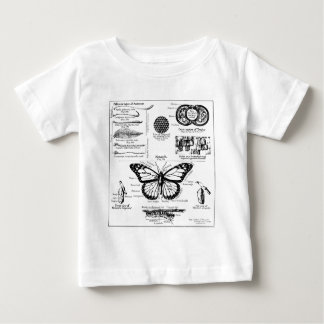 Monarch Butterfly Information Tees