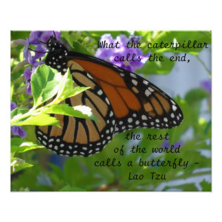 Monarch Butterfly Inspirational Quote Poster Photo