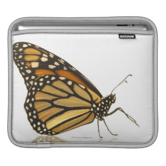 Monarch butterfly iPad sleeves