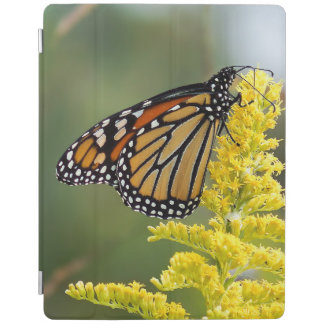 Monarch Butterfly iPad Smart Cover iPad Cover