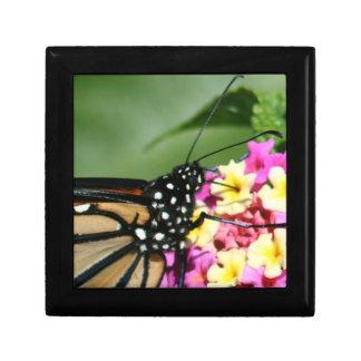 Monarch Butterfly, Lantana Flowers.Gift Box