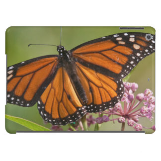 Monarch Butterfly male on Swamp Milkweed Case For iPad Air