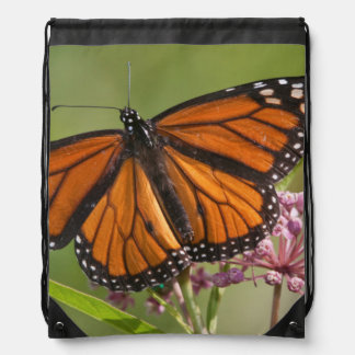 Monarch Butterfly male on Swamp Milkweed Drawstring Bags