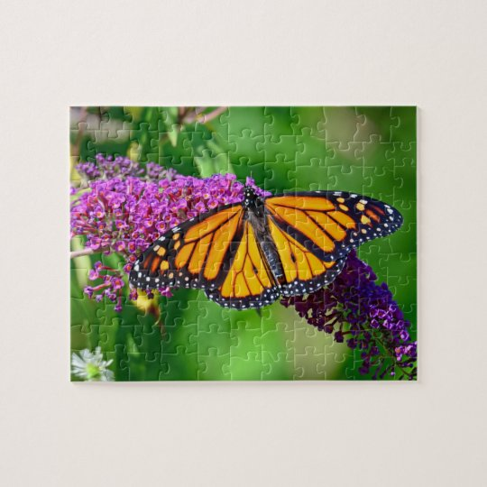 Monarch Butterfly on a Flower 8x10 Jigsaw Puzzle