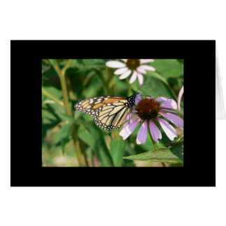 Monarch Butterfly on a Purple Cone Flower Greeting Card