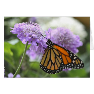 Monarch Butterfly on a Purple Flower Greeting Card