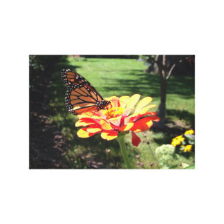 Monarch Butterfly on Canvas Stretched Canvas Print