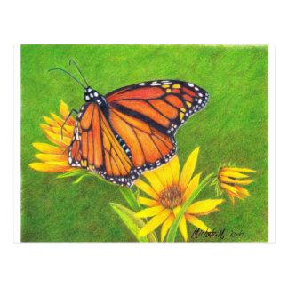 monarch butterfly on flowers postcard