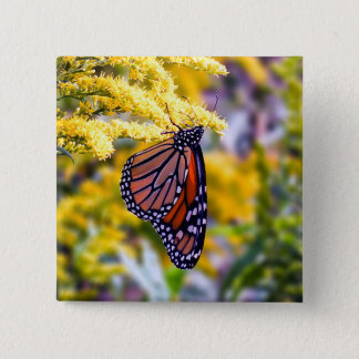 Monarch Butterfly on Goldenrod Button