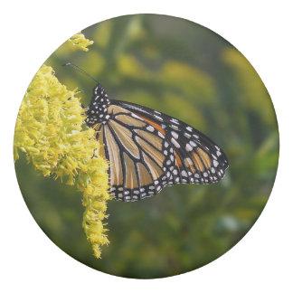 Monarch Butterfly on Goldenrod Eraser
