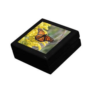 Monarch Butterfly on Goldenrod Keepsake Gift Box