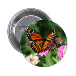 Monarch Butterfly on Lantana Flower 6 Cm Round Badge