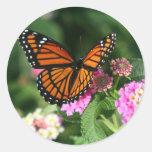 Monarch Butterfly on Lantana Flower Stickers