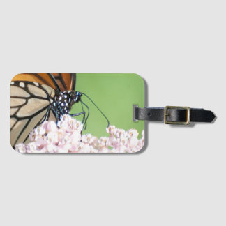 Monarch butterfly on milkweed luggage tag