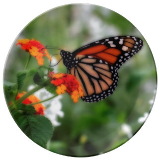 Monarch Butterfly on Orange and Red Lantana Plate