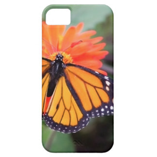 Monarch butterfly on orange flower case for the iPhone 5