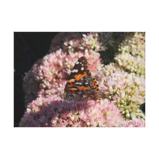 Monarch butterfly on pink flower print canvas prints