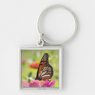 Monarch Butterfly on Pink Flower Silver-Colored Square Key Ring
