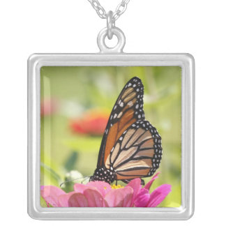 Monarch Butterfly on Pink Flower Square Pendant Necklace