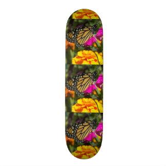 Monarch butterfly on pink marigold-skateboard