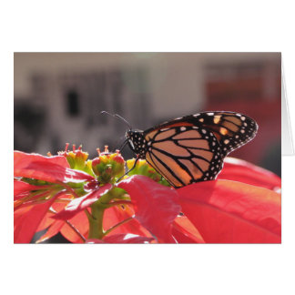 Monarch Butterfly on Poinsettia Greeting Card
