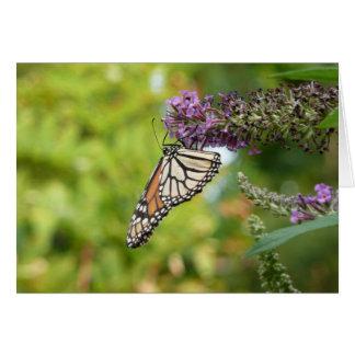 Monarch Butterfly on Purple Butterfly Bush Greeting Card