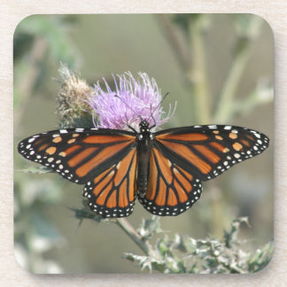 Monarch Butterfly on Thistle Flower Cork Coasters
