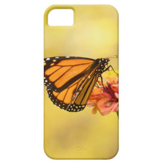Monarch Butterfly on Zinnia Case For The iPhone 5