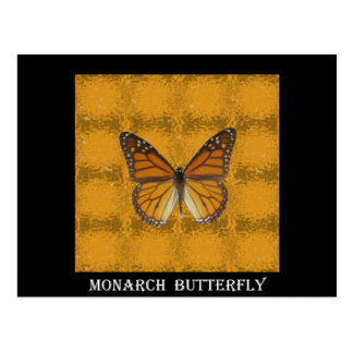 Monarch Butterfly Postcards