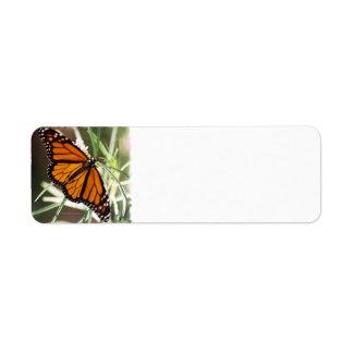 Monarch Butterfly Return Address Labels