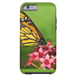 Monarch Butterfly  Side View Vibrant Photograph iPhone 6 Case