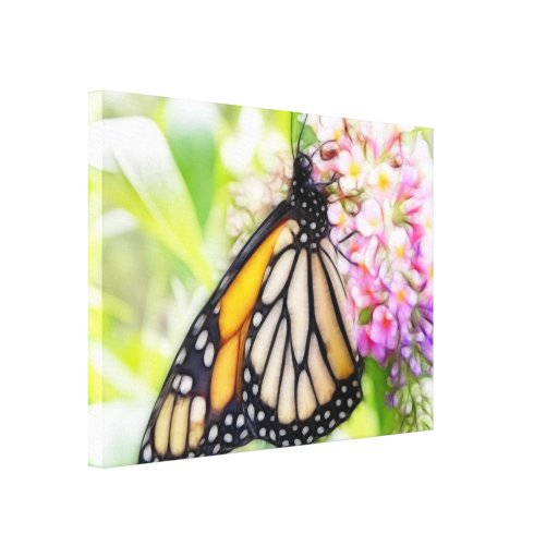Monarch Butterfly Sipping Nectar Canvas Prints
