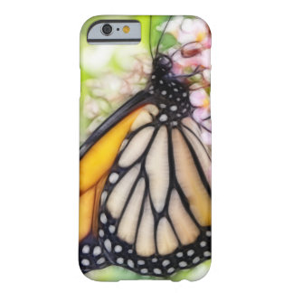 Monarch Butterfly Sipping Nectar Barely There iPhone 6 Case