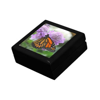 Monarch Butterfly Small Square Gift Box