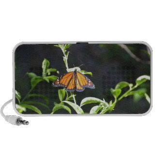 Monarch Butterfly. Notebook Speakers