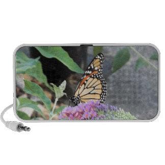 monarch butterfly iPod speakers