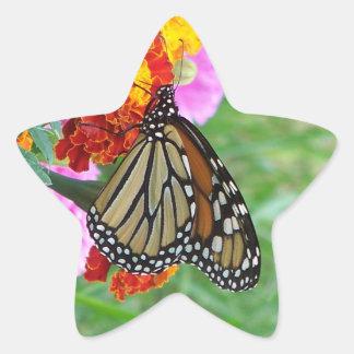 Monarch Butterfly Star Sticker
