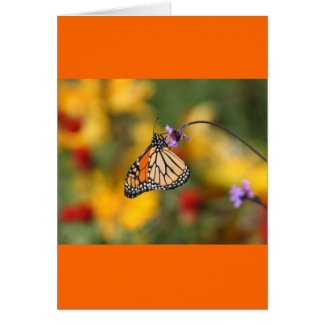 Monarch Butterfly Stops for Pollen Card