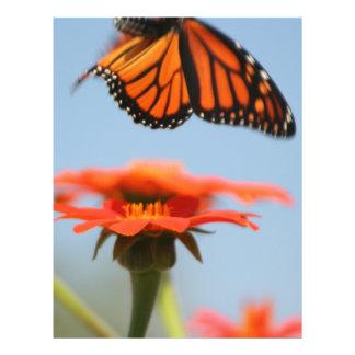 Monarch Butterfly Takes Flight 21.5 Cm X 28 Cm Flyer