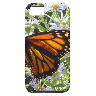 Monarch Butterfly Tough iPhone 5 Case
