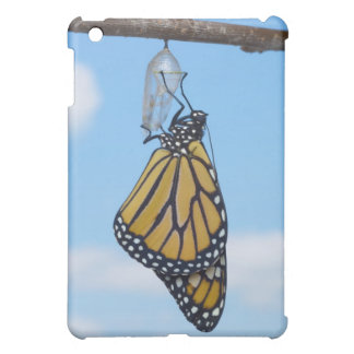 Monarch Butterfly, with Chrysalis iPad Mini Case