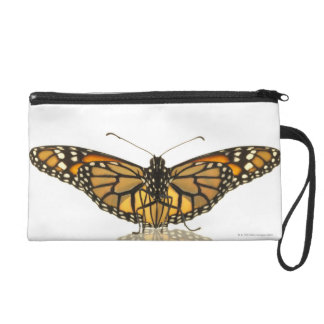 Monarch butterfly with wings spread wristlet purses
