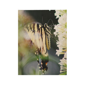 Monarch Butterfly Wood Poster